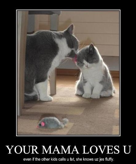 Your Mama Loves You