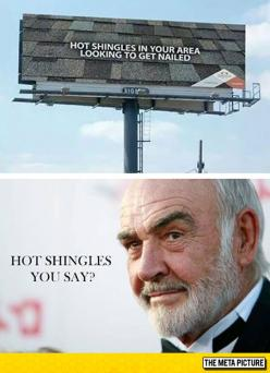 All The Shingle Ladies