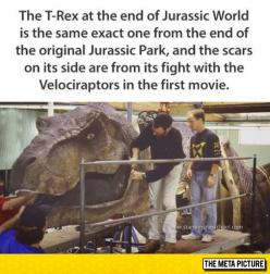 For All The Jurassic World Fans Out There