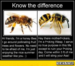 For Those Who Can't Tell The Difference