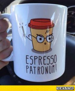 The Perfect Gift For Any Harry Potter Fan
