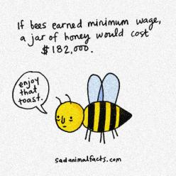 If Bees Were Paid For Their Work