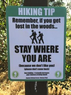 If You Get Lost In The Woods