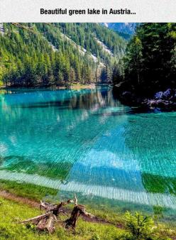 The Water Is So Transparent