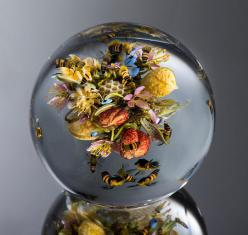 This Glass Marble Is Spectacular