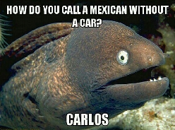 A Mexican Without A Car