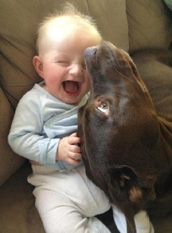 Cute Little Boy And His Best Friend