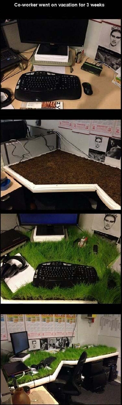 Hope You Like Your New Environmental Desk
