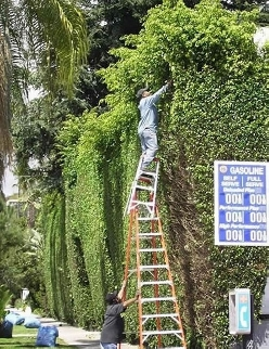Ladder Stacker