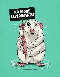 No more experiments!