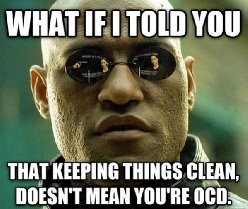OCD and Cleaning