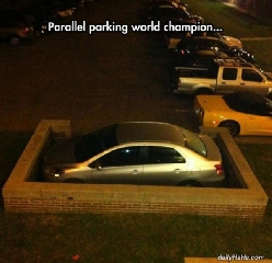 Parallel Parking World Champion