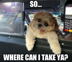 Taxi Drivaww