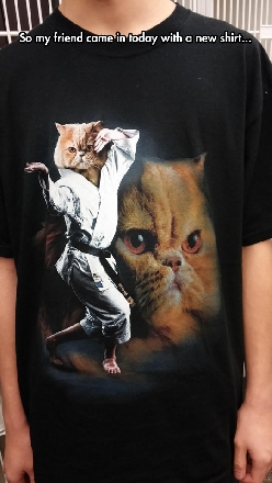 The Karate Cat T-Shirt