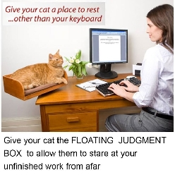 Floating judgment box