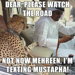 Meanwhile, In the UAE