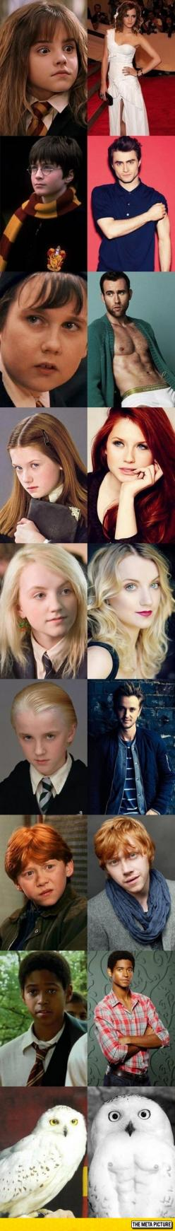 Everyone In Harry Potter Has Changed