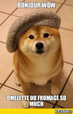 French Doge
