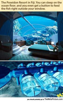 I Need To Spend One Night Here