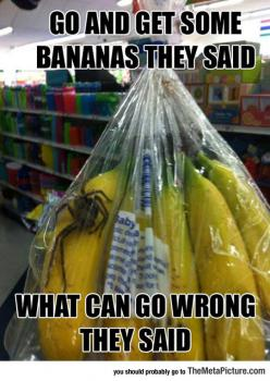 Just Get Some Bananas