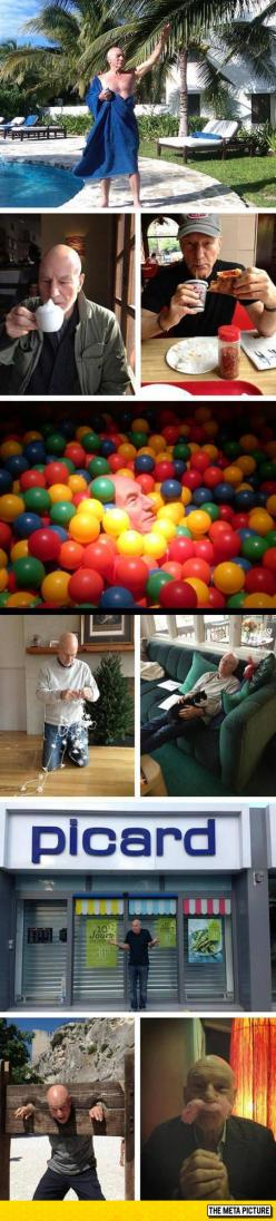 Just Patrick Stewart Being Awesome, Like He Only Knows
