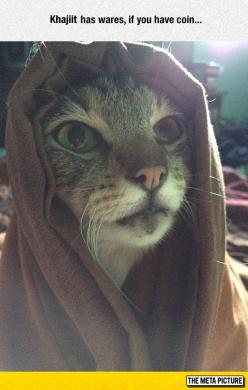 M'aiq Wishes You Well