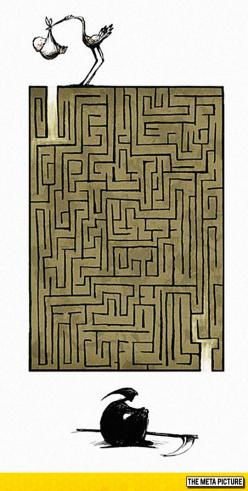 The Great Maze Of Life
