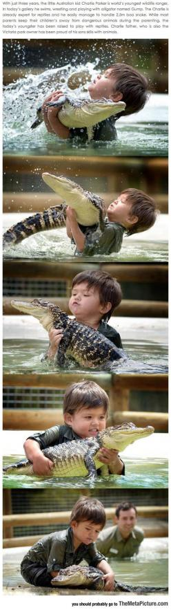 The New Steve Irwin