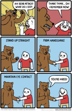 What To Do If A Bear Attacks You