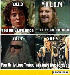 YOLO Alternatives