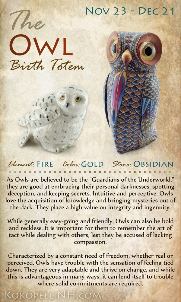 Are you the mysterious Owl? The Owl Native American Birth Totem represents those born from Nov 23 - Dec 21. Owls love knowledge and freedom. Visit our website to read more about this birth totem.: Native American Totem, Native American Birth Totem, Native