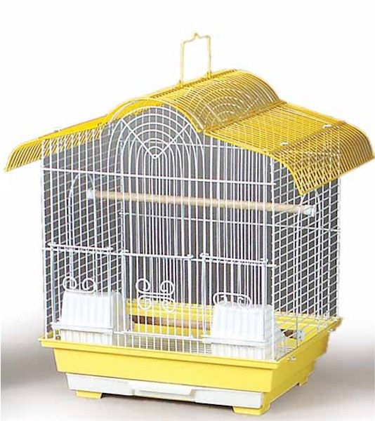 Canary Bird Cage: Fun Birdcage, Small Birds, Cage Features, Canary Cage, Bird Cages, Store Cage, Canary Birds