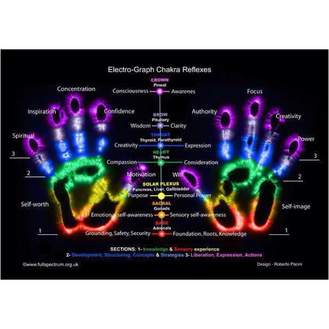 Even our hands emanate energy based on our chakra system. The base part of the palm connects to our root and the tips of our fingers connect to our crown.: Chakra Reflexes, Hand Chakras, Electro Graph Chakra, Hands, Reiki, Energy Healing, Energy Work, Hea