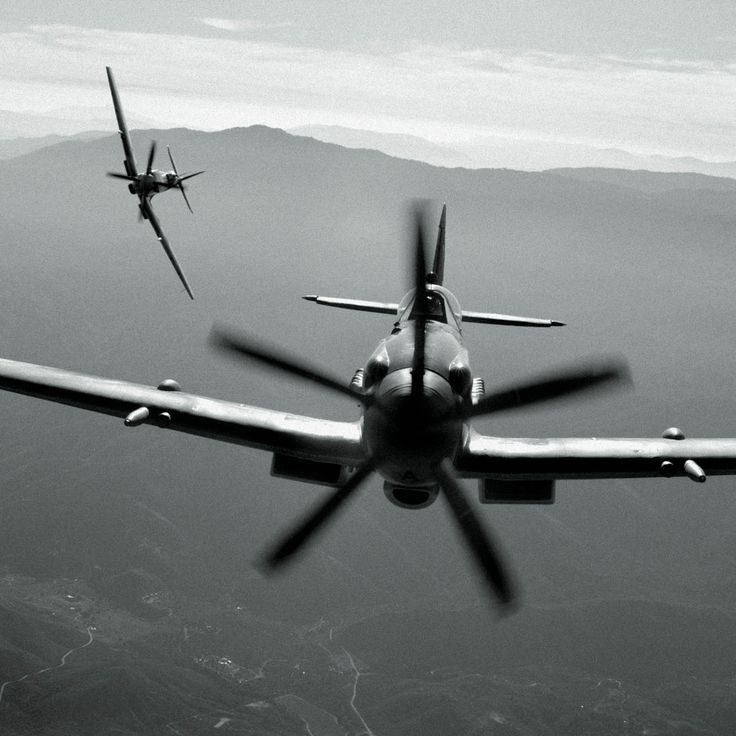 Airplane: Aviation, Airplanes, Aircraft, P 51 Mustang, Supermarine Spitfire, P51 Mustang, Photo