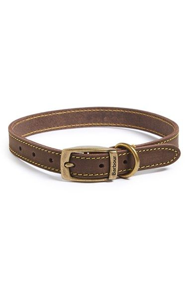 Barbour Leather Dog Collar available at #Nordstrom: Theodore Roosevelt, Aka Teddy, Roosevelt Aka, Leather Dog Collars, Barbour Leather, Furry Baby