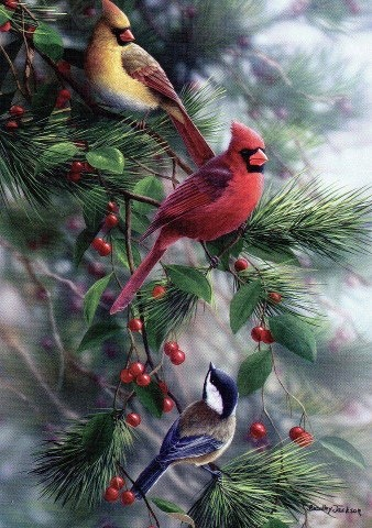 Cardinals: Ideas, Art, Beautiful, Christmas, Holidays, Painting, Red Birds, Animal, Cardinals