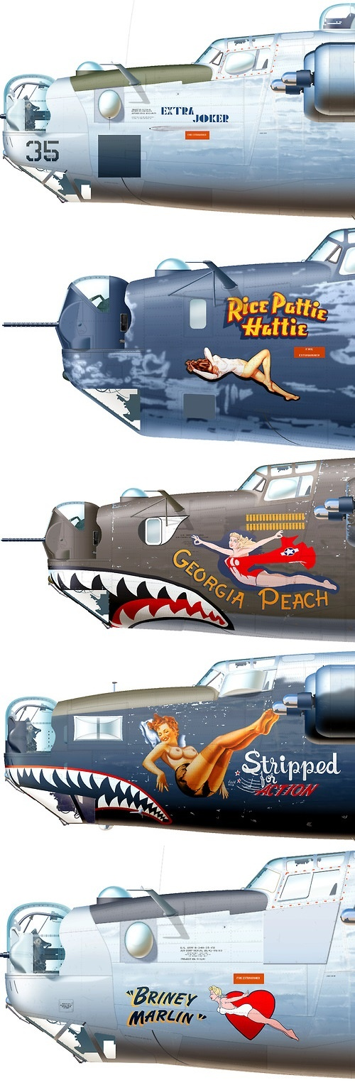 """Consolidated B-24 Liberator Aircraft My Uncle, a pilot in the Flying Tigers flew one called """"Tough Titty"""": Nose Art, Military Aircraft, Vintage Airplane, Aircraft Nose, Pinup, Tigers Flew, Liberator Aircraft, Flying Tigers"""