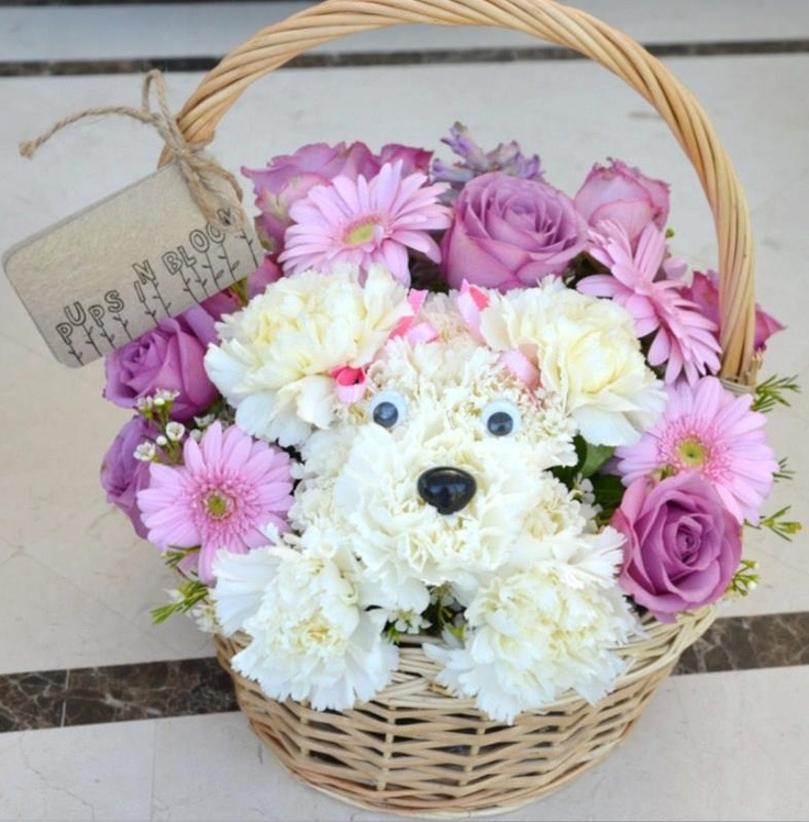 Cute puppy flower arrangement: Carnation Arrangements, Flores Flowers, Gift Ideas, Puppy Animal Flowers, Flower Arrangements, Puppy Flower, Floral Arrangements, Craft Ideas