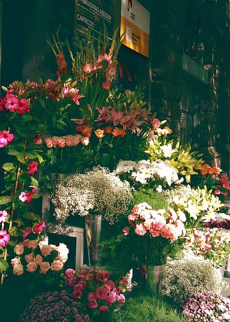 Don't know where this is, but it looks like a flower stall we happened upon in Barcelona!!!: Flower Shops, Beautiful Flowers, Florist Shop, Flowershop, Pretty Flower, Flower Market