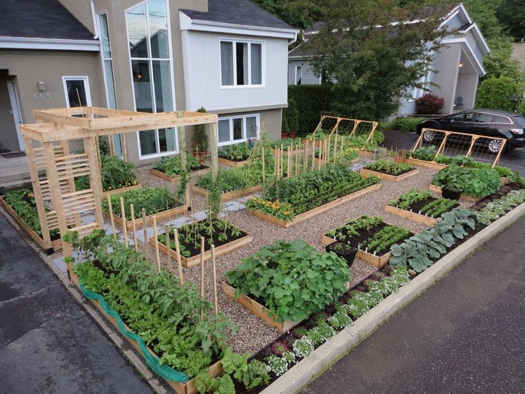 Front Yard Garden France#Repin By:Pinterest++ for iPad#: Garden Ideas, Front Yard Garden, Front Yards, Gardening, Vegetables Garden, Gardens, Vegetable Garden