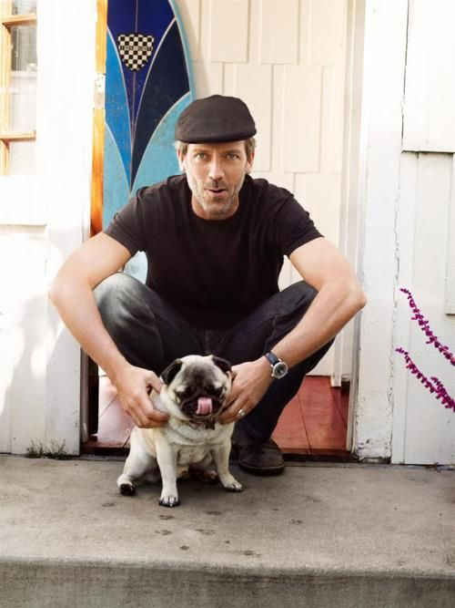 Hugh Laurie with his pug: Hugh Laurie, But, Animals, Dogs, Pet, Dr House, Pugs, People