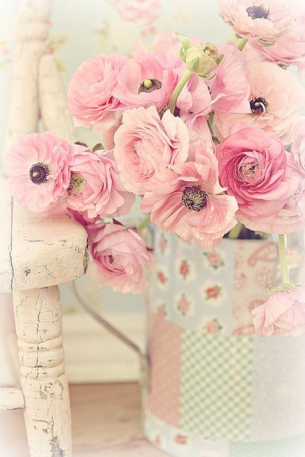Maria Starzyk is one of the most wonderful still life photographers I have ever seen. Her work is simply amazing.  Visit her site on flickr to see all of her beautiful collection!: Pink Flowers, Rose, Sweet, Color, Shabby Chic, Pretty Pastel, Beautiful Fl