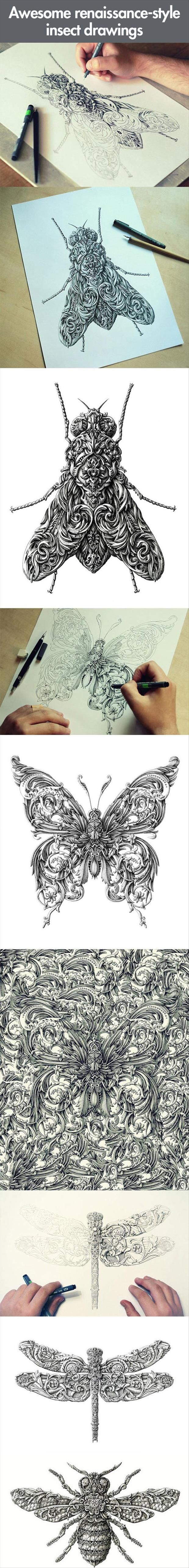 Now That's Art! – 23 Pics: Insect Drawings, Awesome Renaissance Style, Renaissance Style Insect, Birds Insects Flowers, Ink Drawings, Distinctive Insects, Drawing Insects, Awesome Art, Ornate Insects