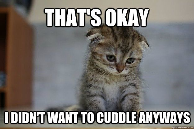 Oh noooo! My heart. Going to cuddle with my baby boy stat!!! 12 Very Sad Kittens That Never Quite Became A Meme: Cuddle Meme, Cats Meme, Cat Hug, Kittens Meme, Adorable Kitten, Even Cute, Cuddling Meme, Baby Kitty