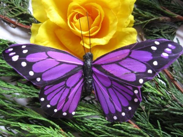 Purple Feather Butterflies, Lilac Feather Butterfly, Artificial Feather Butterfly - All Things Bride and Beautiful: Beautiful Butterflies, Purple Butterflies, Yellow Rose, Nature, Purple Butterfly, Flowers, Animal