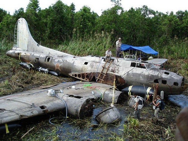 """This is the Boeing B-17E Flying Fortress known as the """"Swamp Ghost"""", serial number 41-2446, which crash landed in Agaiambo swamp near Papua, New Guinea in 1942, during the start of salvage operations.: B 17, Swamp Ghost, B17 Flying, Flying Fortres"""