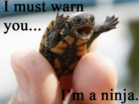 A lizard did this to me once... not long after it bit me and held on with all its might. =|: Animals, Funny Stuff, Things, Ninja Turtles, Ninjas, Funnie