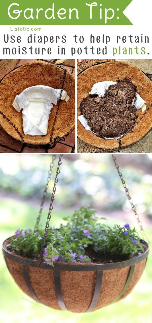 Diapers aren't just for doo doo! Place one in the bottom of a potted plant to help it retain moisture for longer. This would be great for those summer annuals that require daily watering.: Diy Gardens Ideas, Flowers Garden Ideas, Flower Pots Diy Ideas, Di