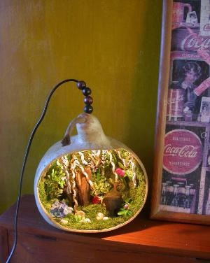 DIY: .. Fairy garden / home: Lights, Real Gourd, Zoo Forest, Fairy Gardens, Gourds, Fairies Garden, Light Exotic