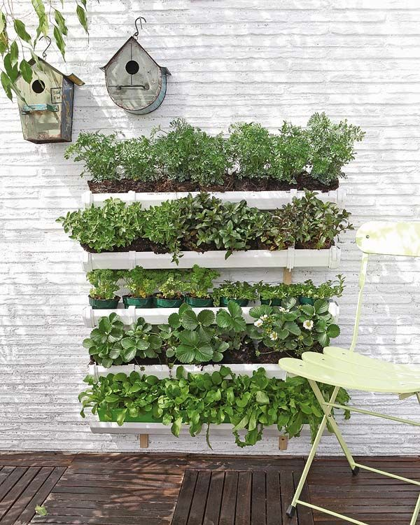 DIY: vertical garden (video): Garden Ideas, Outdoor, Vertical Gardens, Gardening, Orchard, Diy, Garden